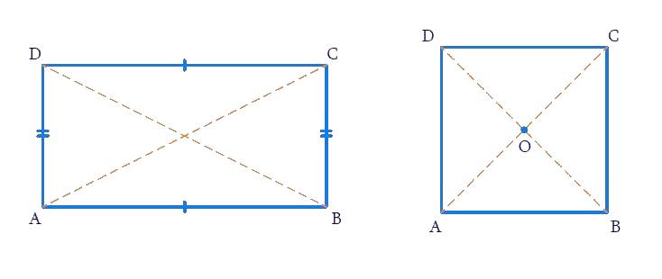 Rectangle and Square