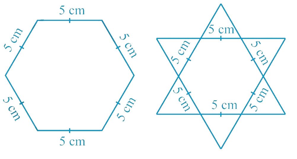Complete the hexagonal and star shaped rangolies s [see Fig. 7.53 (i) and (ii)] by filling them with as many equilateral triangles of side 1 cm as you can. Count the number of triangles in each case. Which has more triangles?