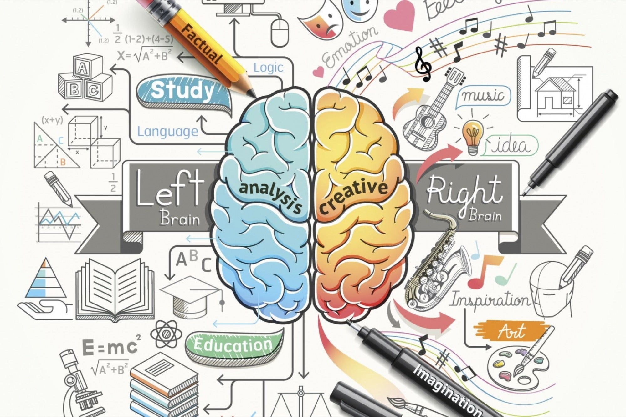 Activities associated with left and right brain