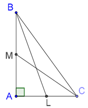 Right-angled triangle and medians