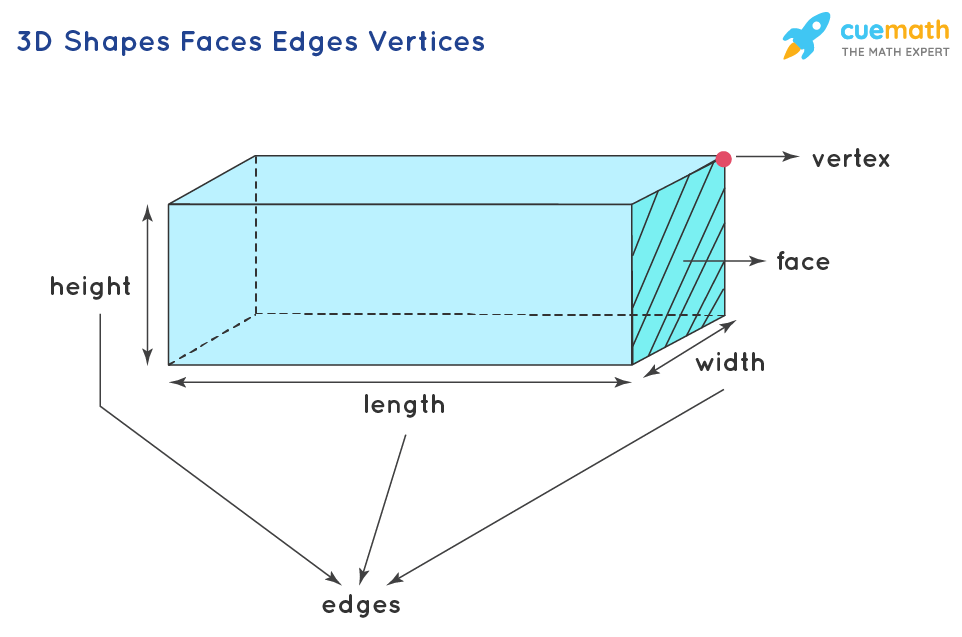 3D Shapes Faces Edges and Vertices