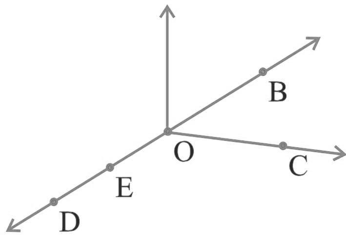 use the figure to name the following