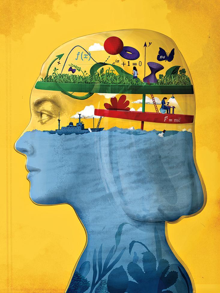 Math learning in brain