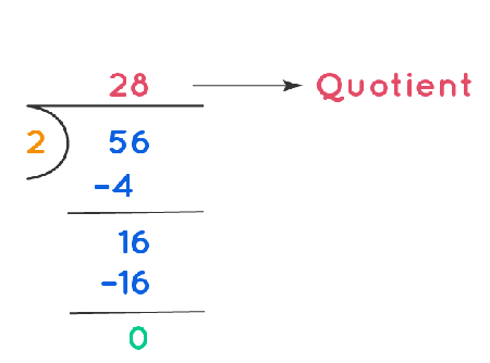 Long Division of 56 divided by 2