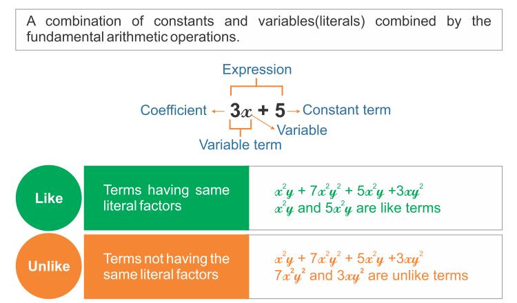 Like and Unlike Algebraic expressions