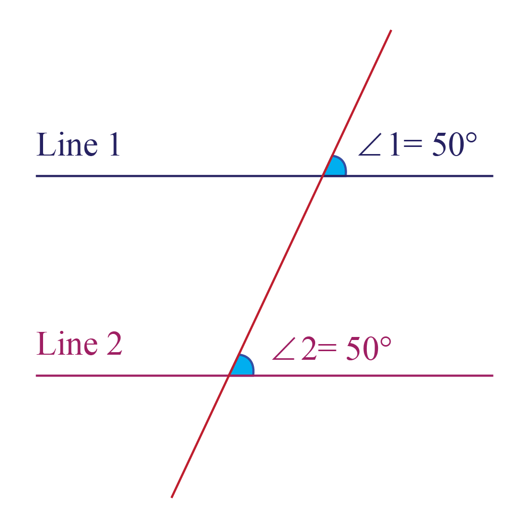 Corresponding Angles Postulate - Two parallel lines with corresponding angles equal to 50 degrees.