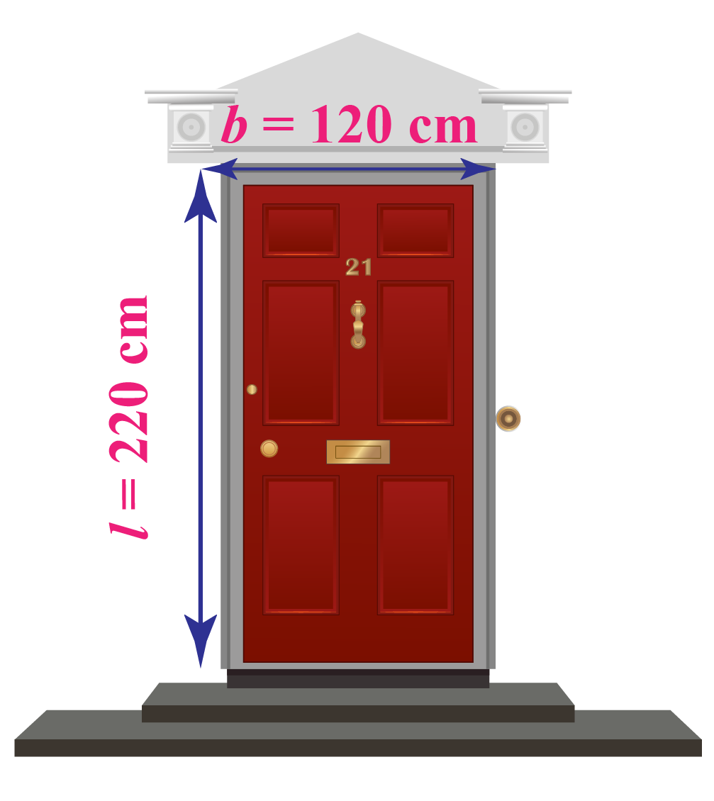 Door with dimensions 220 by 120 cm