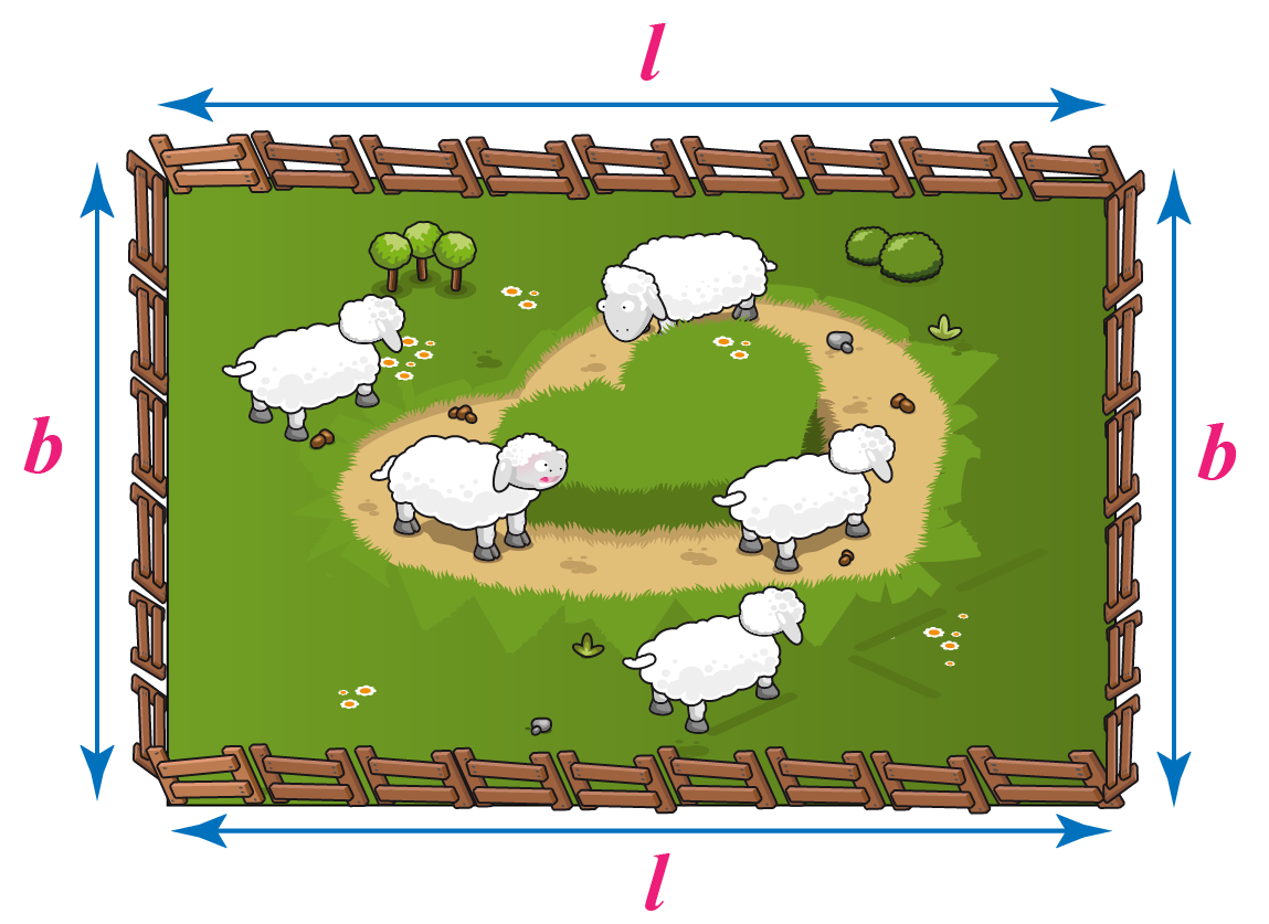 Rectangular farm with sheep inside, l and b are marked
