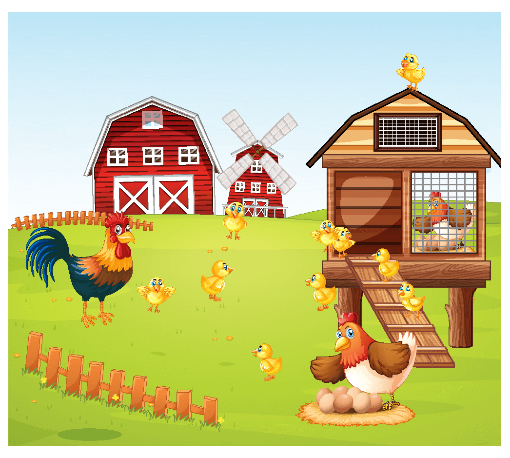 a farm with hens and chicks