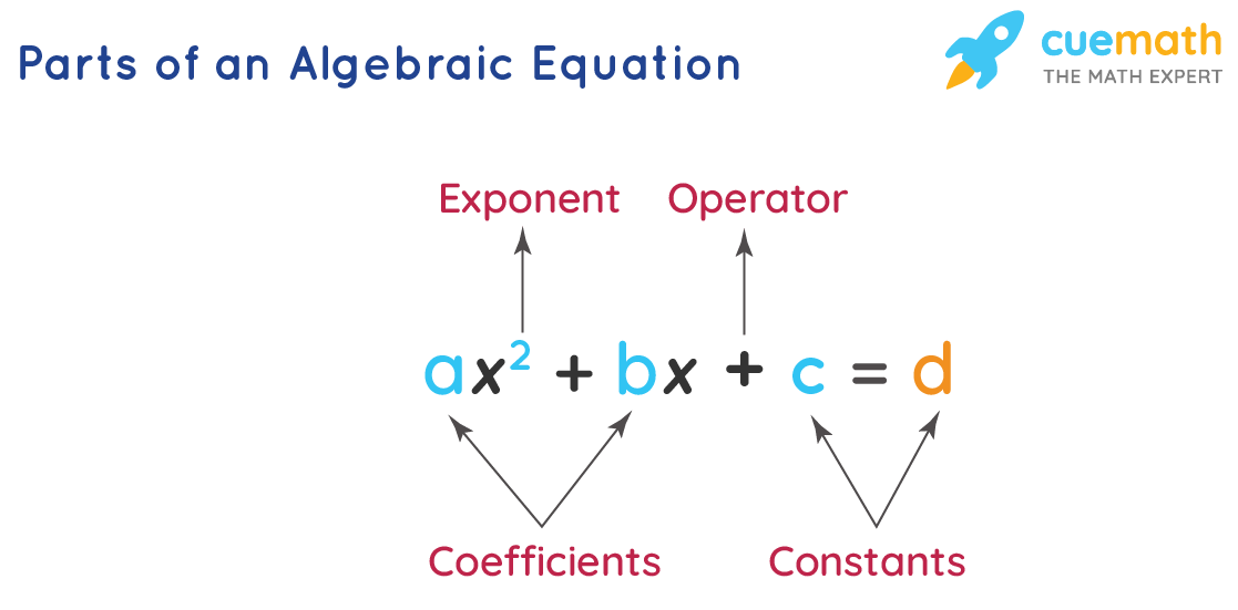 Algebraic Equation Parts