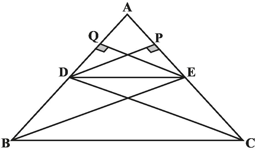 BPT - Image 2
