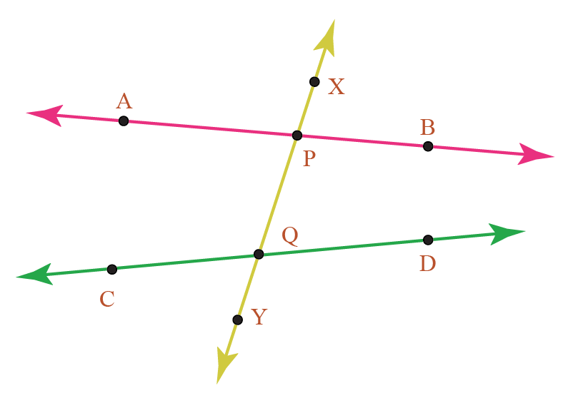 figure showing vertical line XY intersecting two other horizontal lines
