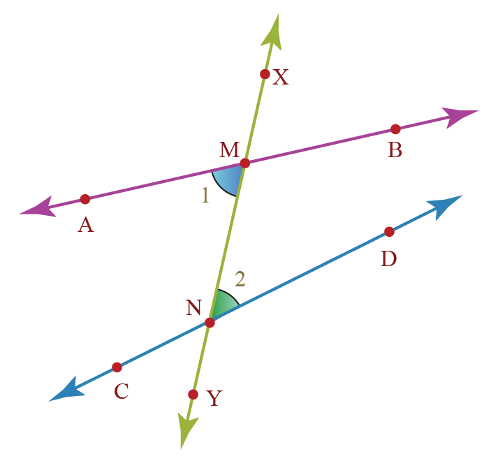 examples of alternate interior angles