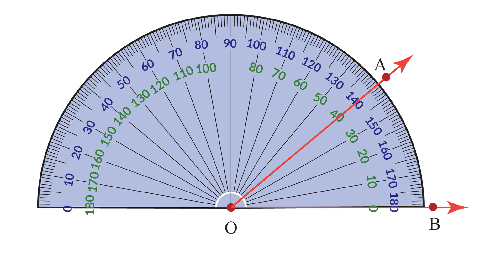 The number on the protractor that coincides with the second ray is the measure of the angle.