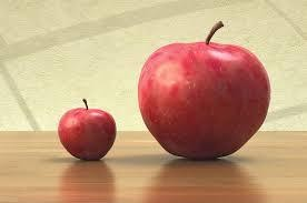 Size of apples