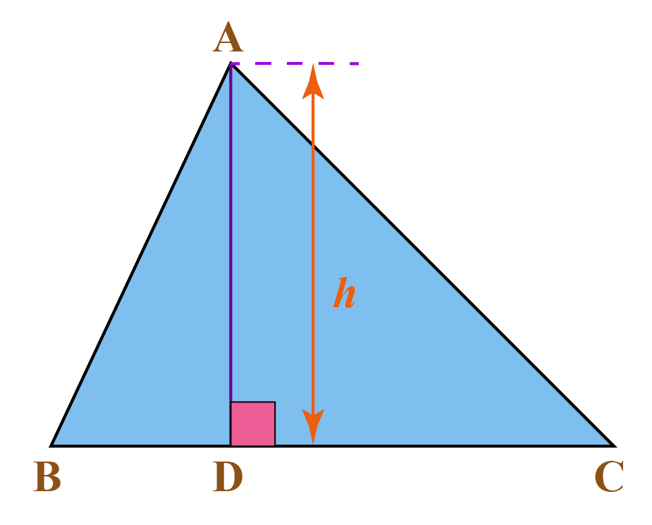 Area of triangle formula is shown using a triangle with height h.