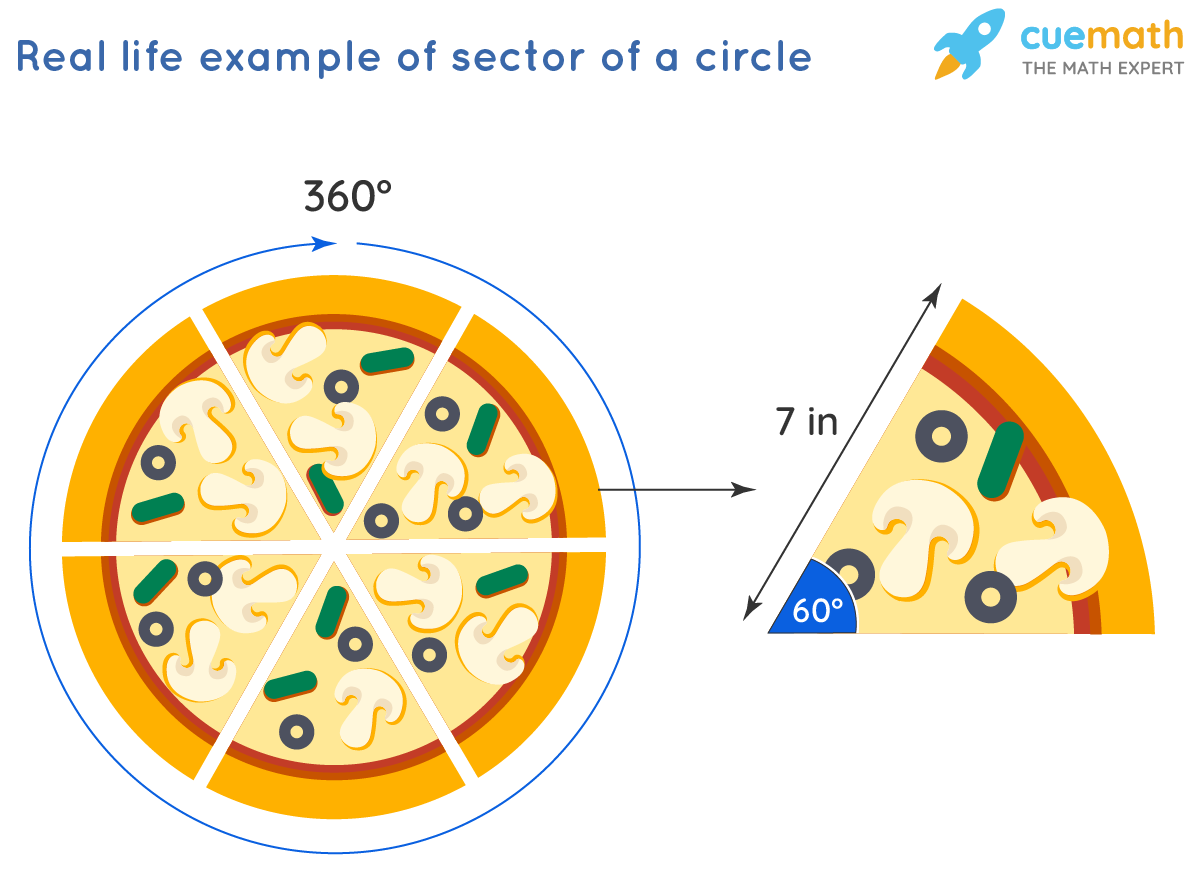 Area of a Sector of a Circle: Real Life Example