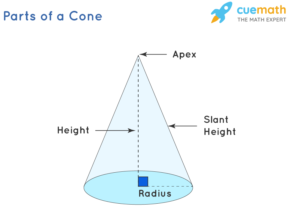 Base area of a cone - Parts