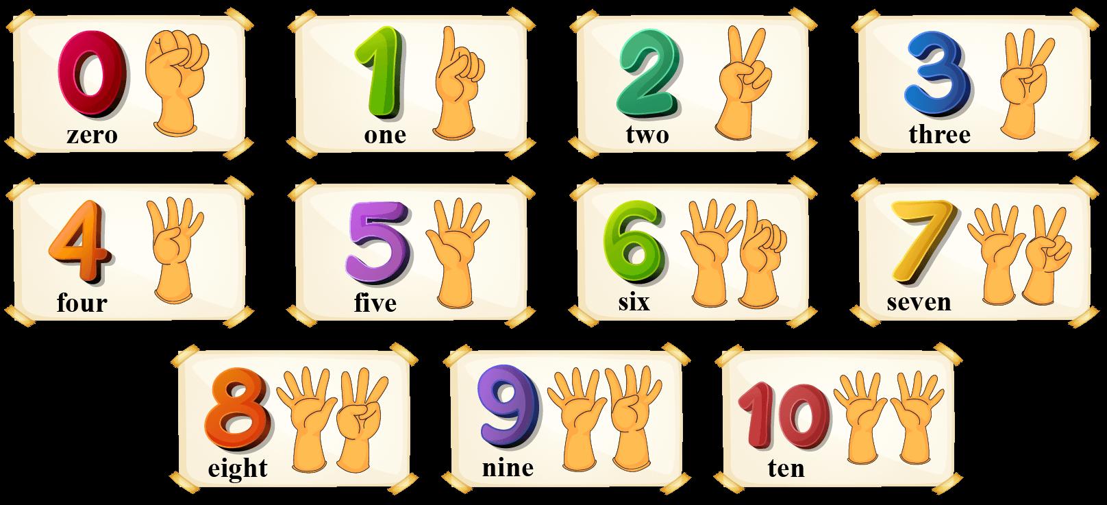 number names- kindergarten math assignments, activities