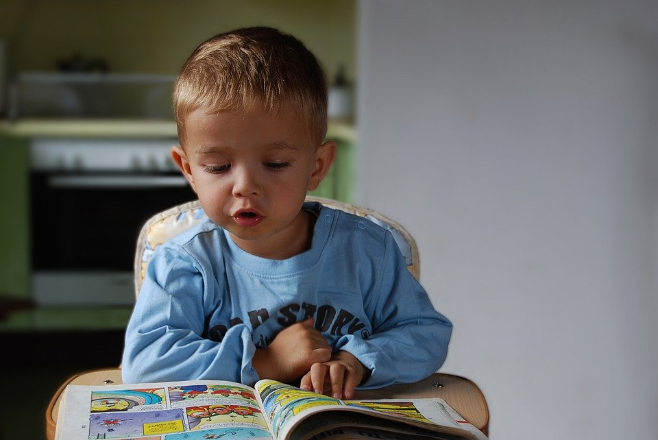 Reading habit: small child reading a book