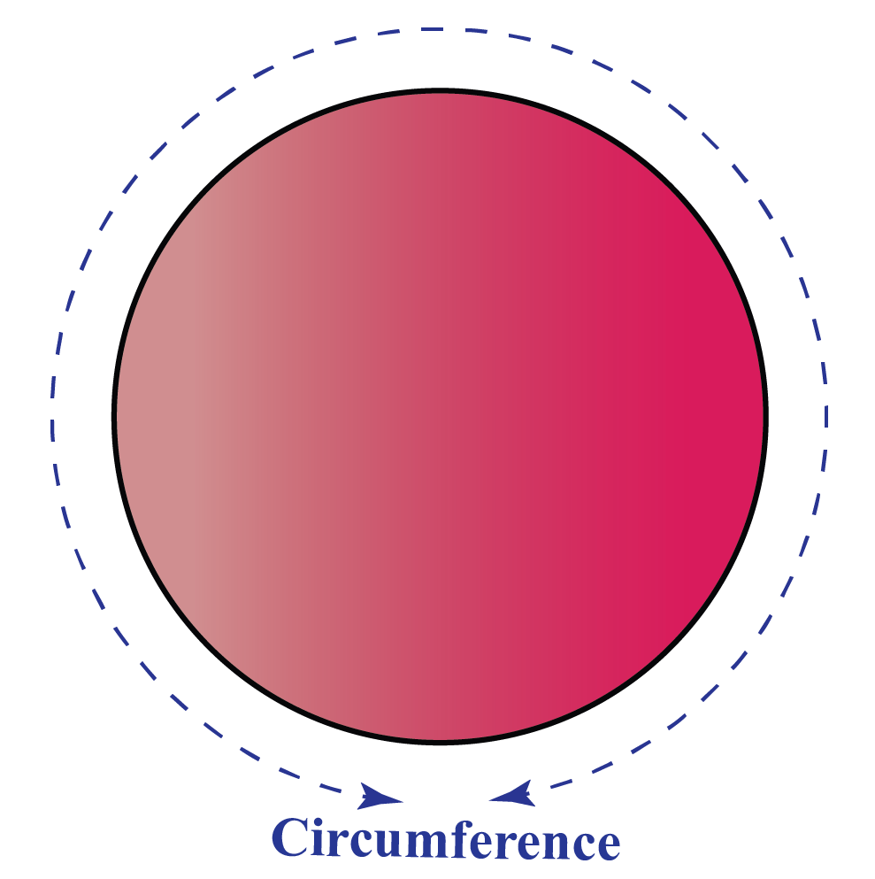 Circle showing the circumference