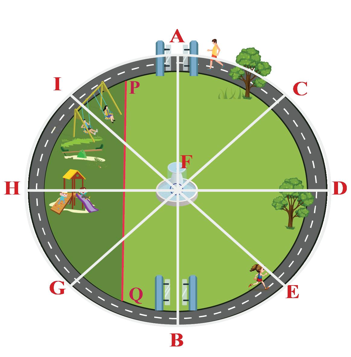 Multiple diameters shown in the park