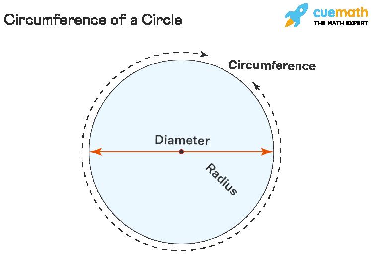 Parts of Circle - Circumference