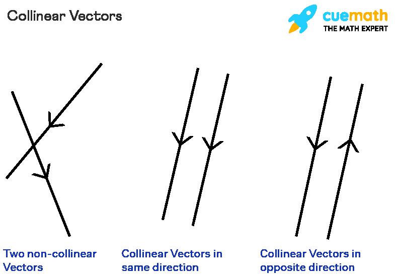 Collinear Vectors