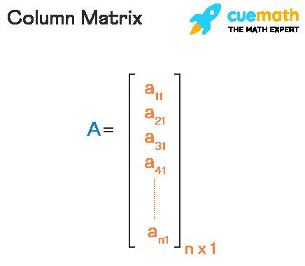 Column Matrix