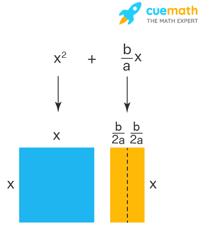 Completing the square using geometry - The rectangle is divided into two equal parts. The length of each rectangle is b/(2a).