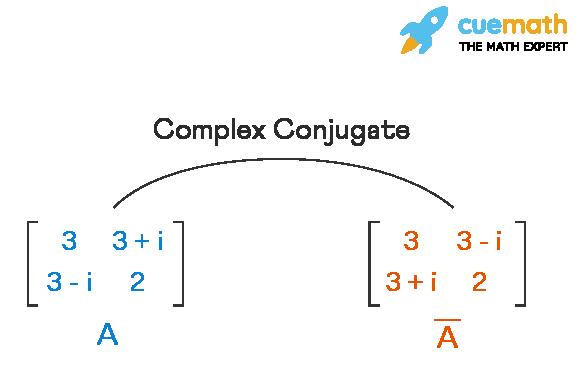 Complex conjugate of matrix