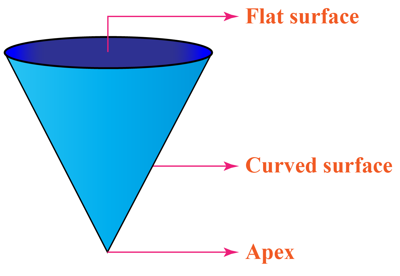 Cone with flat surface, apex, and curved surface marked on it.