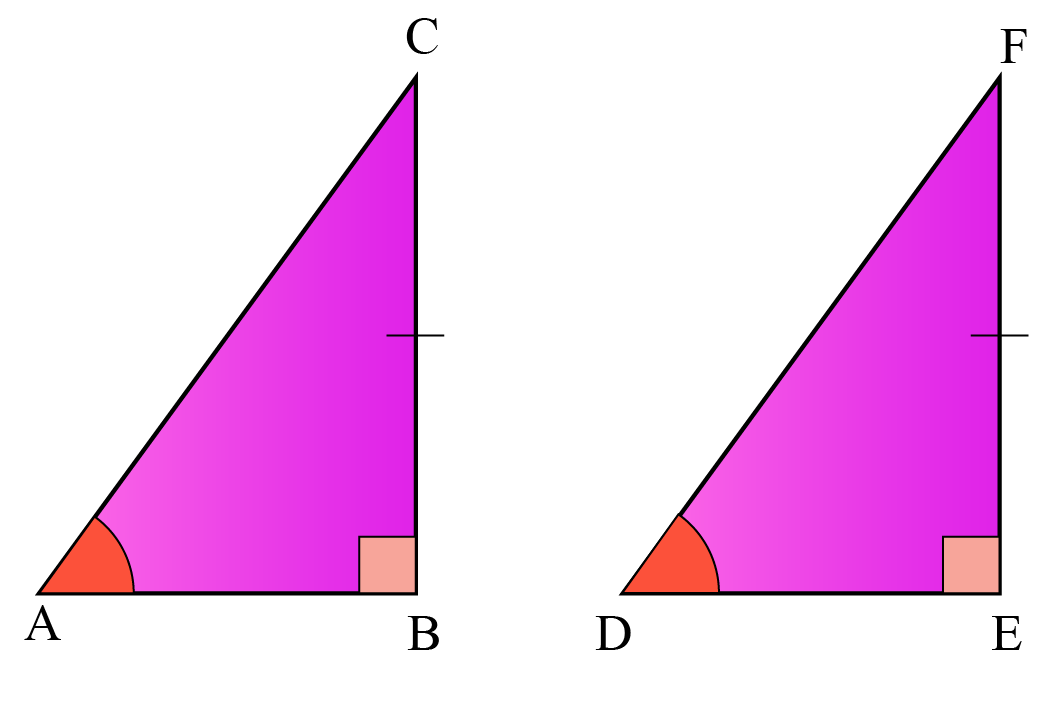Examples of congruent triangles of class 8 - Two right angled triangles are shown where one side and an acute angle of one of the triangles is equal to the corresponding side and angle of the other triangle.
