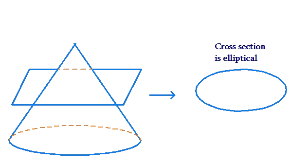Cone's cross-section is elliptical