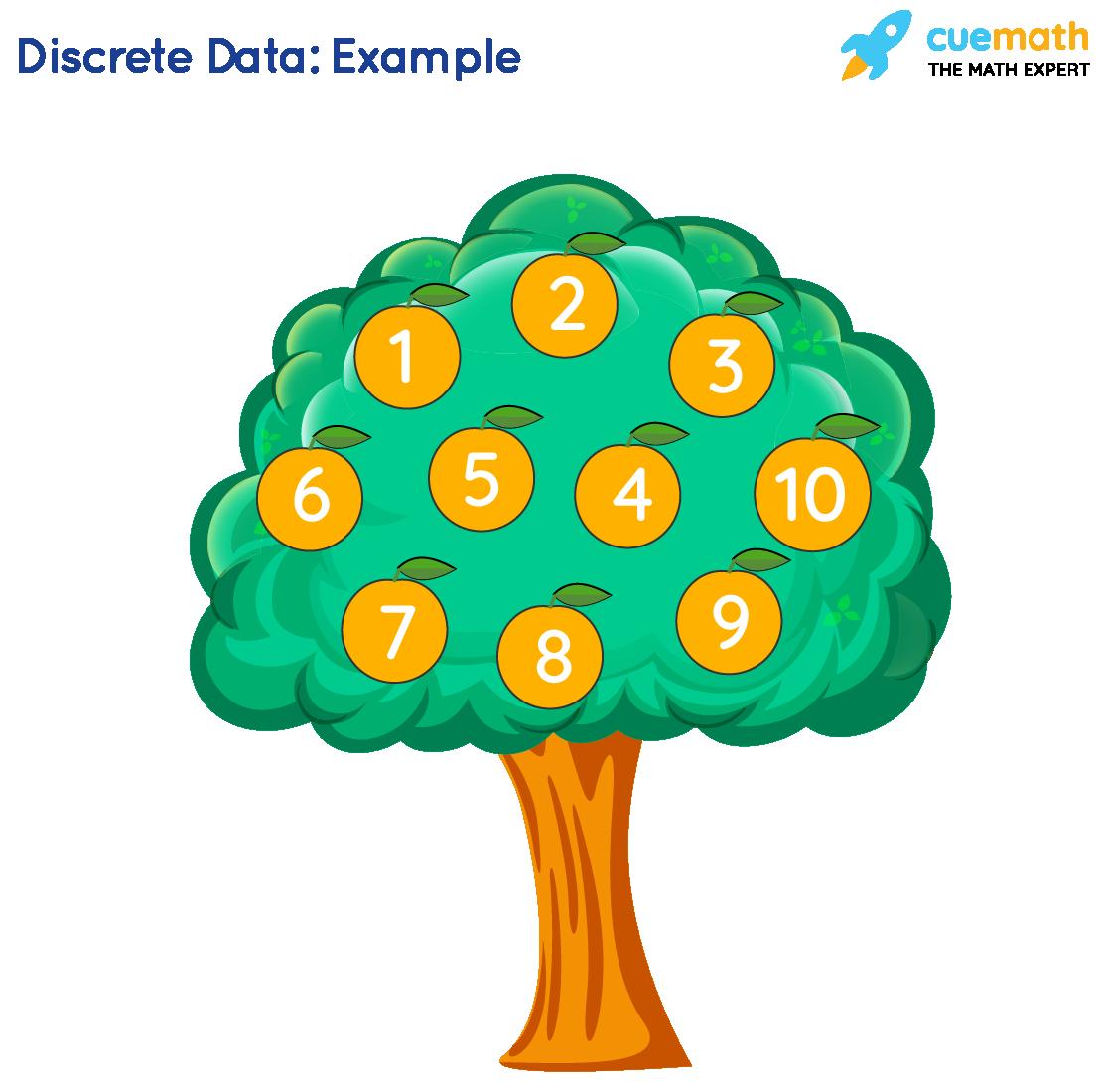 Count orange on the tree Premium Vector