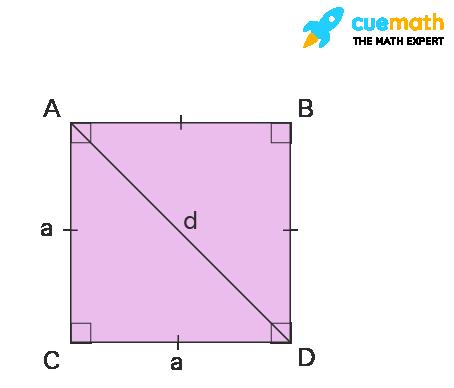 Diagonal Angles of Square