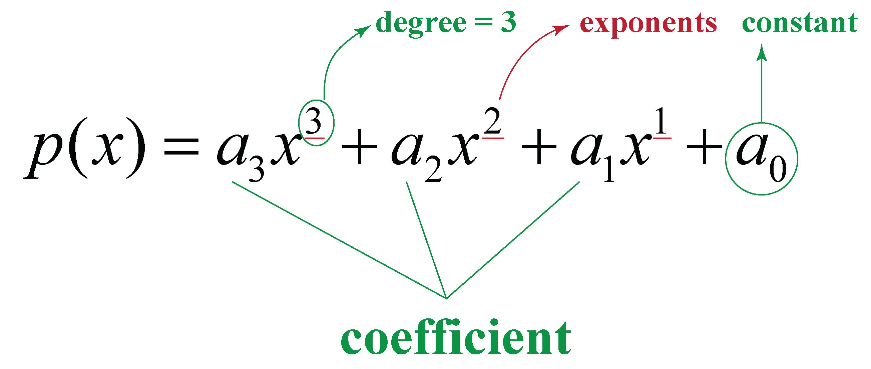 nth degree polynomial