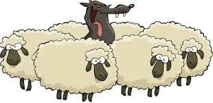 Wolf and the lambs