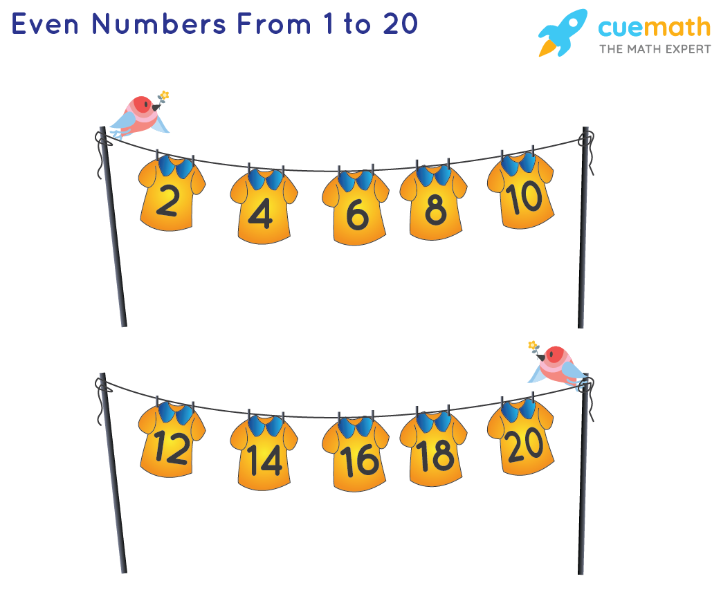 even numbers chart