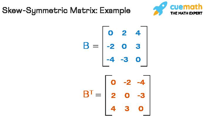 Example of skew symmetric matrix
