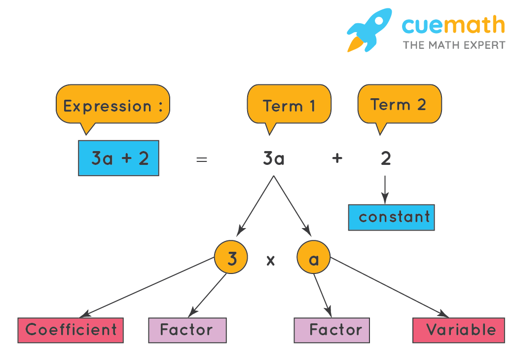 Expression - Term, Factor and Coefficient
