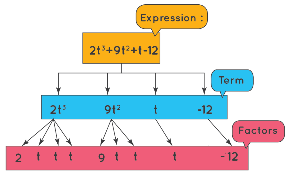 finding terms and factors in an algebraic expression