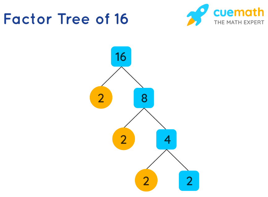 Factor tree of 16