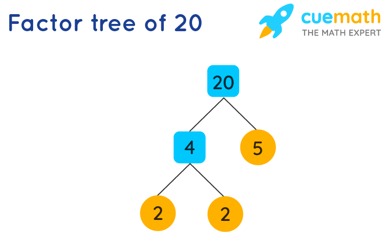 Factors of 20 by Prime Factorization