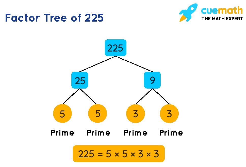 Factor Tree of 225