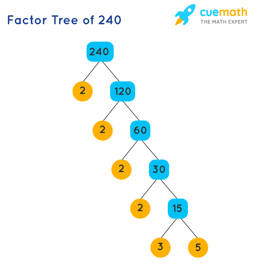 finding prime factors using the factor tree of 240