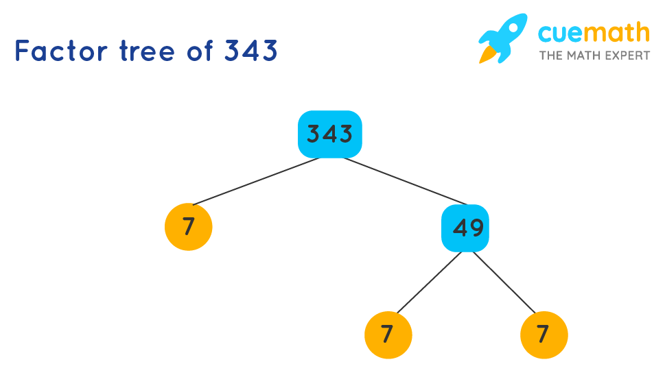 Factor tree of 343 to find the prime factors of 343