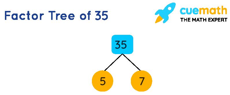 Factor tree of 35