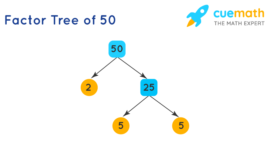 Factor tree of 50