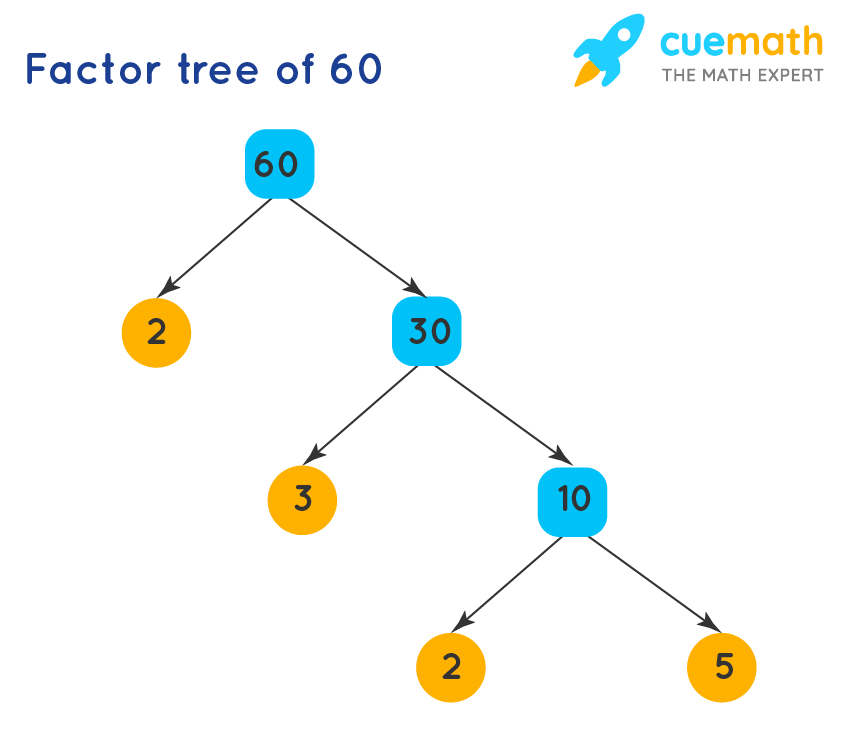 Factor tree of 60